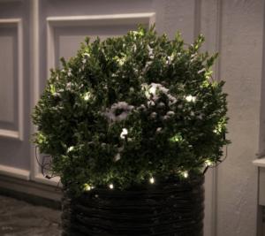 LED julebelysning